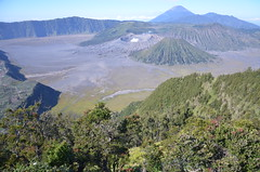 079 (www.LifeandMore.pl) Tags: indonesia volcano java bromo agung
