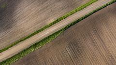 Swede Lake Farm (Tony Webster) Tags: minnesota us unitedstates farm farmland crop dirtroad agriculture watertown agricultural swedelake