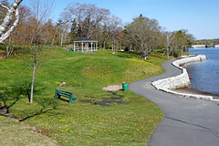 NS-00319 - Dingle Park (archer10 (Dennis) (74M Views)) Tags: park canada novascotia sony dingle free hike dennis jarvis northwestarm iamcanadian mirrorless dinglepark freepicture 1650mm dennisjarvis a6300 sirflemmingpark archer10 dennisgjarvis ilce6300