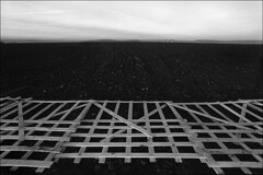 Installation of a wind-shelter fence on an arable land along the highway (misha maslennikov) Tags: bw film nikon russia don f3 steep maslennikov otherrussia osered