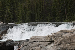 The new waterfall on the Elbow river,  not sure what to call them maybe Junction falls as they are the junction of the elbow river and Nihahi creek? (davebloggs007) Tags: new creek waterfall falls elbow nihahi
