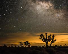 New Moon June 2016 #12 (MarcCooper_1950) Tags: sky skyscape stars landscape outside outdoors nikon scenery moody desert dramatic astrophotography nightsky hdr lightroom milkyway starlight longeposure d810 desertnight marccooper aurorahdr