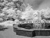 Sitting (in the Park) (DomiKetu) Tags: park city trees blackandwhite bw woman white black fountain monochrome landscape ir reading mono landscapes blackwhite sitting glow panasonic romania infrared sibiu blackwhitephotos 850nm parcultineretului tz10