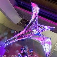 Prehistoric Aviary (Erth) (Japester68) Tags: city light sculpture animal festival night fly flying dinosaur outdoor sydney vivid australia event nsw aus prehistoric 2star