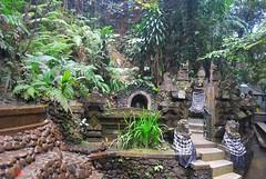 be truly a familiar name (microwalrus) Tags: bali garden ubud