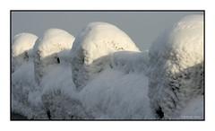 133 Niagara Falls, Ontario 2004 (DBattag) Tags: winter ice waterfalls scenary niagaraonthelake niagarafallsontario