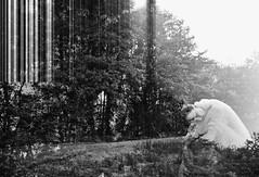 Seelenschatten der Wlder (One-Basic-Of-Art) Tags: marysun wald wlder oberpfalz tfp annewoyand forest tree schatten seelen canon canonixus canonixus500hs shooting einfarbig noir blanc black white schwarzundweis blass durchsichtig gefhl emotion