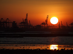 M5296874s (Marvinlee) Tags: sunset sun hongkong olympus ha nai pak e5 50200