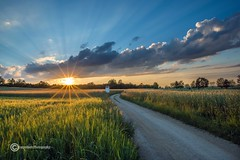 Das Ende eines Sommertags (anton_zach) Tags: clouds sonnenuntergang natur wolken landschaft sonne weg waldviertel weizen weitra