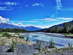 glacier water 2 (dana.ny) Tags: blue mountain alaska forest river glacier silt