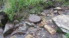 20160716_145811 (StephenMitchell) Tags: adelaidegreenhills nature organic trees gully valley hill mountain blackwood belair edenhills southaustralia trek walk creek rock stone