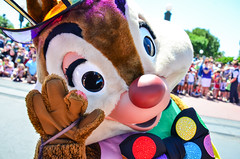 Festival of Fantasy - Storybook Circus (EverythingDisney) Tags: dale circus disney parade disneyworld wdw waltdisneyworld storybook magickingdom chipanddale fof festivaloffantasy
