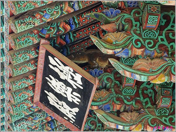 慶州佛國寺 (46).JPG