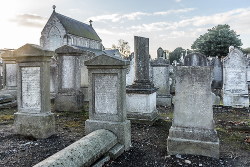 Mount Jerome Cemetery & Crematorium is situated in Harold's Cross Ref-100409