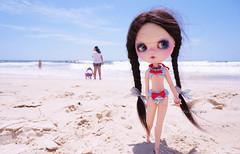 27 Nov 2014.........Spellbound on the beach