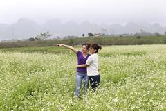 _MG_1153 (liem.ionetour) Tags: travel beautiful landscape nice asia tour du vietnam tay viet mai re gia dep sapa nam bac chau ione maichau dulich mocchau taybac hapdan ionetour