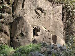 Face (max-12) Tags: face rock atlasmountains morocco sleepinggiant