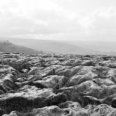 Limestone pavement (Daniel James Greenwood) Tags: mobilephone mobilephonephotos instagram instagramphotography nokialumia