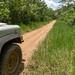 Estrada que segue o rio Tambopata