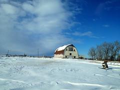 A happy Prairie barn (peggyhr) Tags: blue trees red sky white snow field clouds barn iphone 25faves peggyhr