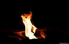 Purity (BALAJI SEETHARAMAN) Tags: wood light india yellow religious fire south prayer divine shutter function agni