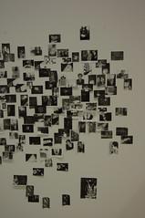 erika kasaiの壁紙プレビュー