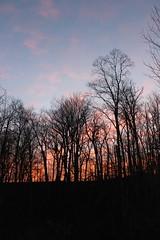 First Sunrise of 2015 (Saline, Michigan) (cseeman) Tags: morning red clouds sunrise purple michigan redsky saline happynewyear purplesky 2015 purplemorning redmorning hny2015 happynewyear2015 saline01012015
