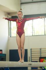 Gymnastics  Lake Macquarie ICG 2014 (Torkn2U) Tags: girls gymnastics lakemacquarie stephentyler girlsgymnastics 2014lmicg
