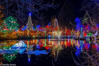 Festival of Lights at VanDusen Botanical Gardens. Over 1 million lights! :)