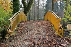 Ham (Somme) - Parc Delicourt (explore 31-12-14) (Morio60) Tags: ham 80 parc picardie somme delicourt