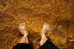 Sunshine (William Solis) Tags: ocean beach 35mm nikon sydney australia newport northernbeaches d610 bungan
