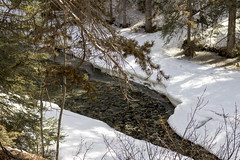 Crystal clear water in Johnston Creek, Johnston Canyon, Banff, Alberta (Jim 03) Tags: blue lake snow mountains ice wall creek river melting path turquoise jim canyon louise covered alberta bow banff icicles johnston jimhoffman jhoffman jim03 wwwflickrcomphotosjhoffman2013 wwwjimahoffmancom