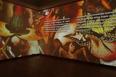 Unseen Masterpieces Bruegel Box sneak peek J. Beauloye (VISITFLANDERS) Tags: art museum culture bruegel kmskb flemishmasters visitflanders