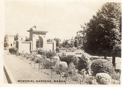 Memorial Gardens Wagga (Daddys 'lil Girl) Tags: postcard australia nsw historical 1949 wagga albury riverina