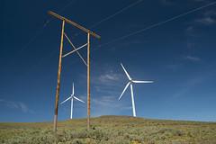 DSCF7165 (jiggumbob) Tags: power washingtonstate turbine windturbine sagebrush windpower windtower sagesteppe wildhorsewindandsolarfacility