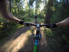 A fast ride (E. Lundin) Tags: road trees tree nature bike speed forest way track sweden path mountainbike fast mtb fir spruce pathway gopro
