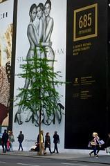 modesty (Julia Manzerova) Tags: newyorkcity newyork tree advertising funny ad 5thavenue figleaf advertisment suggestive