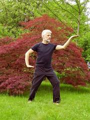 Tai Chi im Park (Hotzenplotz7) Tags: park man tree garden mann meditation taichi garten baum taiji qigong chikung