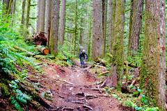 BikeRiding_Squamish_Downhill_AG (revolutionsports.eu) Tags: race northshore biking squamish mountainbikes framebuilder testofmetal allmountain carbonbikes konstructive