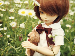 Happy July! (Human Beans) Tags: flowers nature bjd abjd minoru bluefairy flowerfield minoruworld
