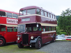 Warrington EED5 Rowsley (Guy Arab UF) Tags: park bus buses warrington derbyshire peak corporation gathering preserved alexander 27 leyland 1946 rowsley pd1 eed5
