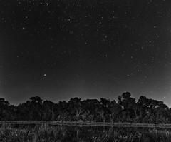 Nuit Debrousse (benjamin thimel) Tags: noir et blanc bw afrique zimbabw paysages landscape canon eos 60d toiles sky night nuit reflets reflections