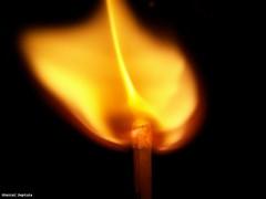 image051 (DanielDeptula) Tags: match fire ignition zapon zapaka ogie zblienie close up makro macro konica minolta dimage z3 deptula