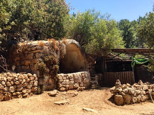 #Filming#Israel#Goatfarm#documentary #Holyland#holylandproductions#orenrosenfeld#filmingisrael#jerusalem#goats#farm