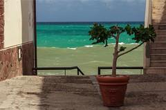. / Cefalu', Sicily  (olgabogdanova12) Tags: instagramapp square squareformat iphoneography uploaded:by=instagram sicily sea seascape landscape blue plant sky italy