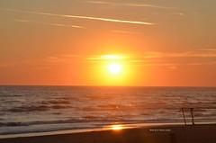 tramonto al mare (freedoog) Tags: light sunset sea sky mer seagulls black water angel clouds de soleil sand eau noir tramonto nuvole mare lumire knife coucher sable scorpion ciel cielo angelo nuages acqua nero gabbiani luce sabbia dange  mouettes couteau   scorpione  coltello