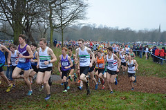 DSC_9584 Fb1 (Dave Pinnington Photography) Tags: park liverpool cross country xc trials park sefton pinno country euro davepinno davepinnington davidpinnington sefton 2014 xc 2014euro liverpooleuro ld xceuro liverpoolrunningcross