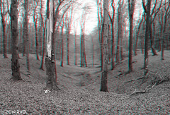 Various 3D SMWM-7 (Pure Natural Ingredients) Tags: b red white black 3d w cyan anaglyph stereo