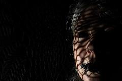 Carabid (Apionid) Tags: selfportrait black dark beetle creepy disturbing day18 selfie carabid werehere day18365 hereios 365the2015edition 3652015 18jan15nikond40speedlightsb700