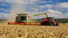 CLAAS LEXION780 Terra Trac APS Hybrid (martin_king.photo) Tags: summer video king republic martin czech time great harvest combine hybrid terra 770 aps harvester trac moisson bl claas lexion 780 v1050 moissonneuse agall martinkingphoto
